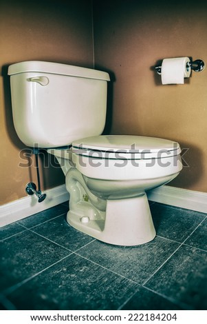 Toilet and Toilet Paper. Toilet and toilet paper in a bathroom. - stock photo