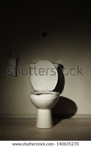 Toilet bowl in a bathroom - stock photo