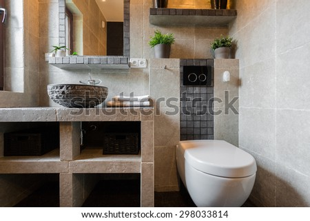 Toilet for guest interior in luxury house