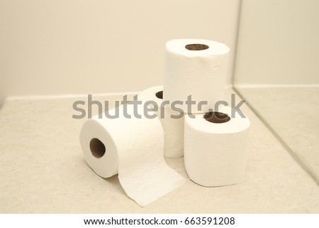 toilet paper in the bathroom