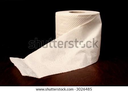 toilet roll - stock photo