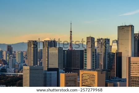 Tokyo aerial panoramic view - stock photo
