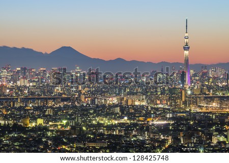 Tokyo city and skytree with Mt Fuji on the background - stock photo