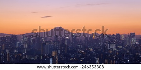 Tokyo city in evening with Tokyo tower and Fuji mountain - stock photo