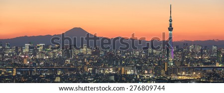 Tokyo cityscape and Mountain fuji in Japan - stock photo