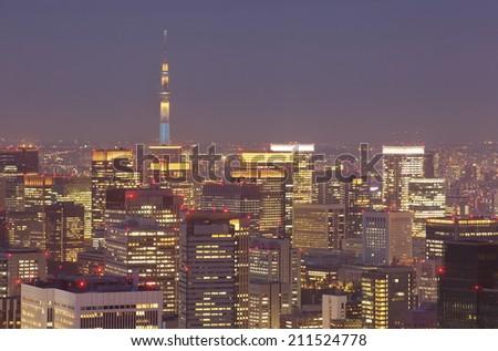 Tokyo cityscape and tokyo sky tree at night   - stock photo