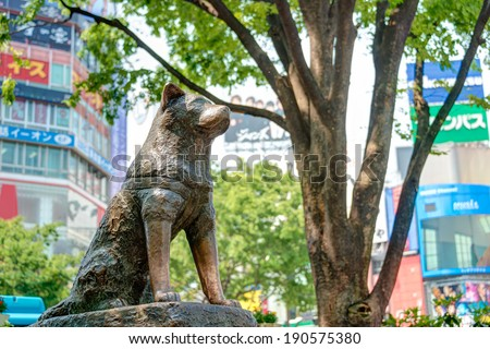 TOKYO, JAPAN - APRIL 17 2014: Hachiko statue. Hachiko (November 10, 1923-?March 8, 1935) was remembered for his remarkable loyalty to his owner which continued for many years after his owner's death. - stock photo