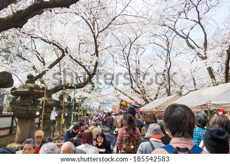 TOKYO, JAPAN - APRIL 1 2014: Visitors enjoy cherry blossom on April 1, 2014 in Ueno Park. Ueno Park is visited by up to 2 million people for annual Sakura Festival.