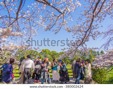 TOKYO, JAPAN - MAR 31: Chidorigafuchi in Tokyo, Japan on March 31, 2015. Chidorigafuchi is one of the best hanami spot in Tokyo.