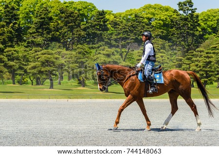 TOKYO, JAPAN - MAY 8, 2017: Unidentified Japanese police man ride a horse around Imperial Palace garden to monitor and secure the palace.
