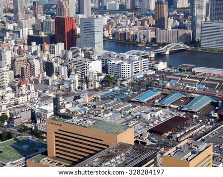TOKYO, JAPAN - SEP 28: Aerial view of Tokyo Metropolis in Japan on September 28, 2015. Tokyo is both the capital and largest city of Japan.