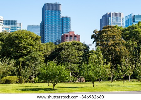 Tokyo Skyline in the Imperial Palace East Gardens, Japan