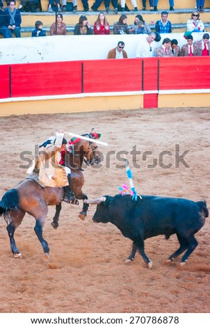 """TOMAR, PORTUGAL - OCTOBER 14: Cavaleiro on the horse fight with the bull and stabbing """"bandarilha"""" to the bull in portuguese style bullfighting in Tomar on October 24, 2010 - stock photo"""
