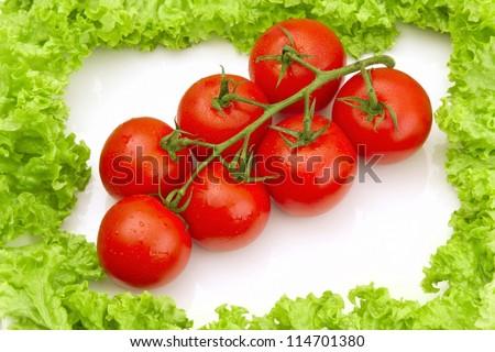 Tomates framed with salad on white background - stock photo