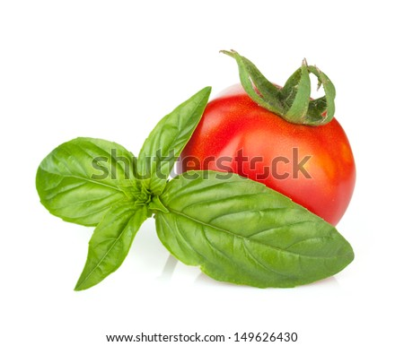 Tomato and basil. Isolated on white background - stock photo