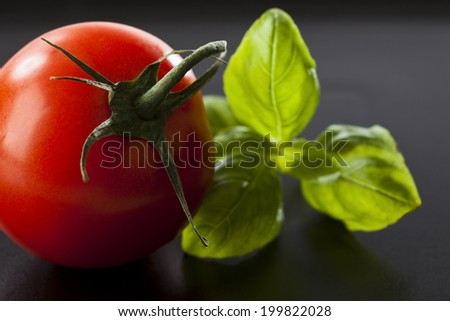 Tomato and basil leaves, close-up - stock photo