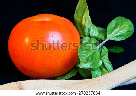 Tomato and basil with wooden utensils on black background. Ripe red tomato with fresh green basil leaves sitting next to it.  - stock photo