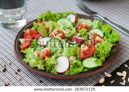 Tomato and cucumber salad with lettuce - stock photo