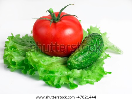 Tomato and cucumber with lettuce - stock photo