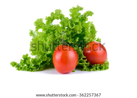 Tomato  and lettuce salad isolated on white background