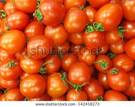 Tomato background. Tomatoes. Group of fresh tomatoes.