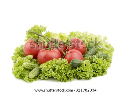 tomato cucumber lettuce leaves on a white background - stock photo