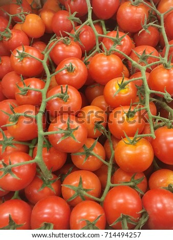 tomato harvest. many red tomatoes. tomato food textures.