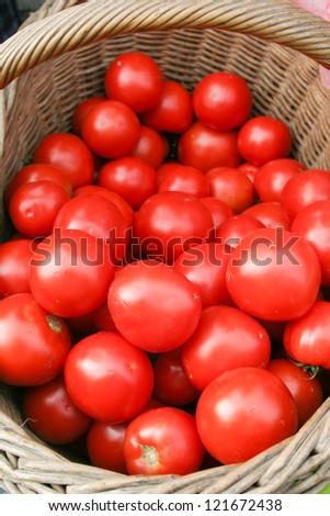 Tomato in basket - stock photo