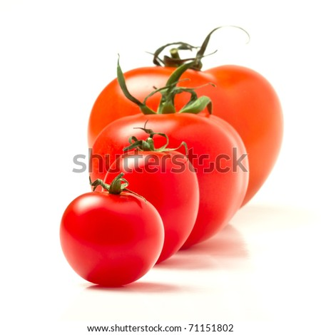 Tomato line up of four different varieties isolated on white. - stock photo