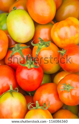 Tomato scientific name Lycopersicon esculentum Mill Is a plant rich in nutrients Medium-sized tomatoes are vitamin C and a half of a grapefruit The tomato fruit is about 1 in 3 of vitamin A,