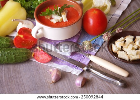 Tomato soup with croutons and vegetables on the table - stock photo
