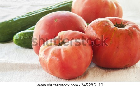 Tomatoes and cucumber - stock photo