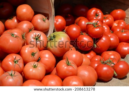 Tomatoes at  a Farmer's Market III