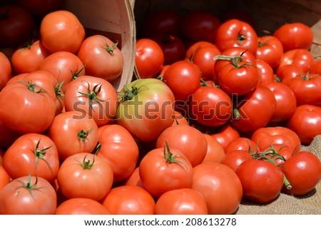 Tomatoes at  a Farmer's Market III - stock photo