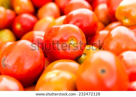 tomatoes background. Group of tomatoes