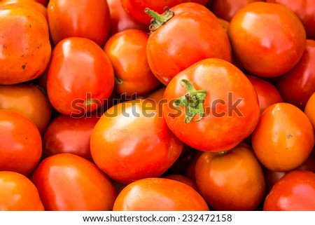 tomatoes background. Group of tomatoes - stock photo