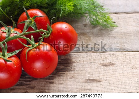 Tomatoes decorated with dill  on wooden background