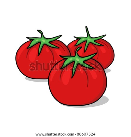 Tomatoes illustration; Red fresh tomatoes freehand drawing