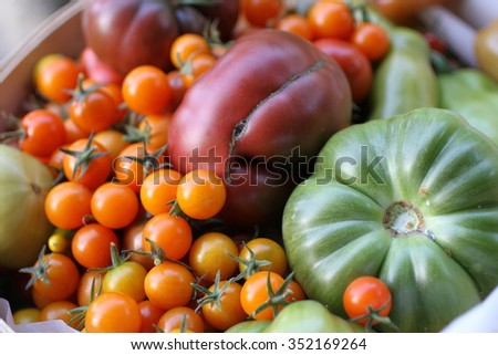 Tomatoes in all shapes and sizes. - stock photo