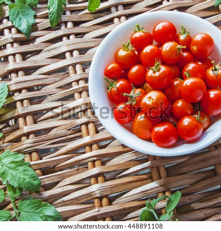 Tomatoes in bowl, ripe and red harvest, on wicker picnic basket, with tomato leaves - with text / copy space - square composition. - stock photo
