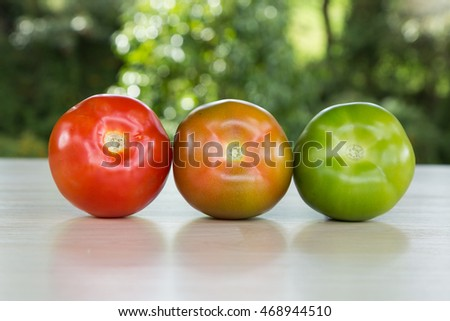 tomatoes in different periods of maturation