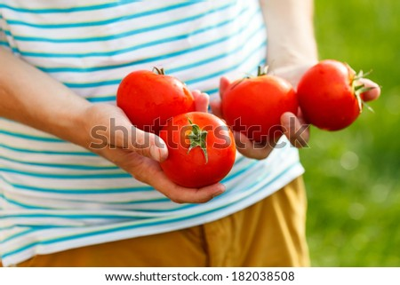 Tomatoes in the hands