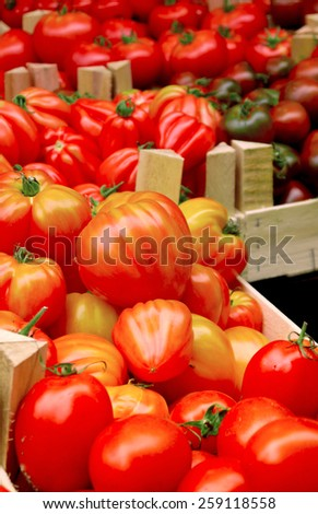 Tomatoes on sale at the farmers market - stock photo