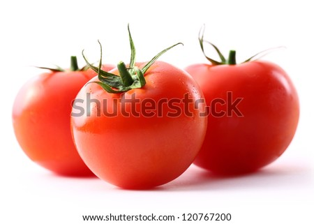 Tomatoes on the white background - stock photo