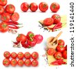 tomatoes, red peppers,spaghetti and spices collage - stock photo