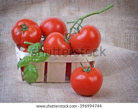 Tomatoes. Ripe tomatoes on rustic background. Red tomatoes. Tomatoes in wood basket. Healthy tomatoes and basil. Group of tomatoes.colorful tomatoes. - stock photo