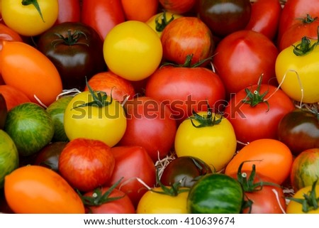 Tomatoes. Tomatoes an market. Colorful tomatoes, red tomatoes, yellow tomatoes, orange tomatoes, green tomatoes. Tomatoes background. Colour tomatoes background.