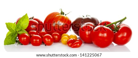 tomatoes with basil isolated on white background