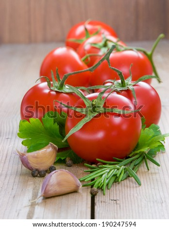 Tomatoes with spices  - stock photo