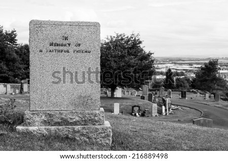 tombstone in memory of a faithful friend - stock photo